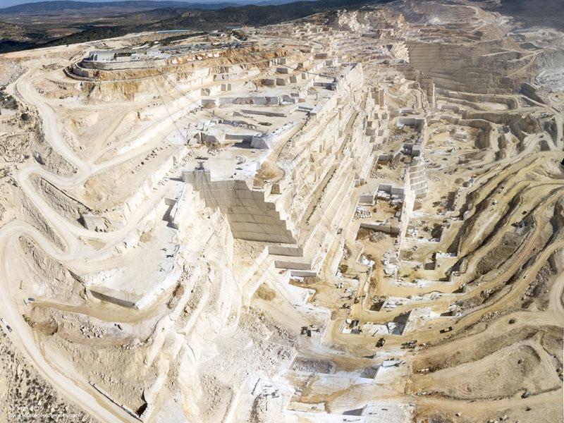 """Plan de restauración en el """"Coto Pinoso"""""""